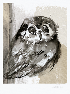 Bilde av Elise Stalder,  Earth owl