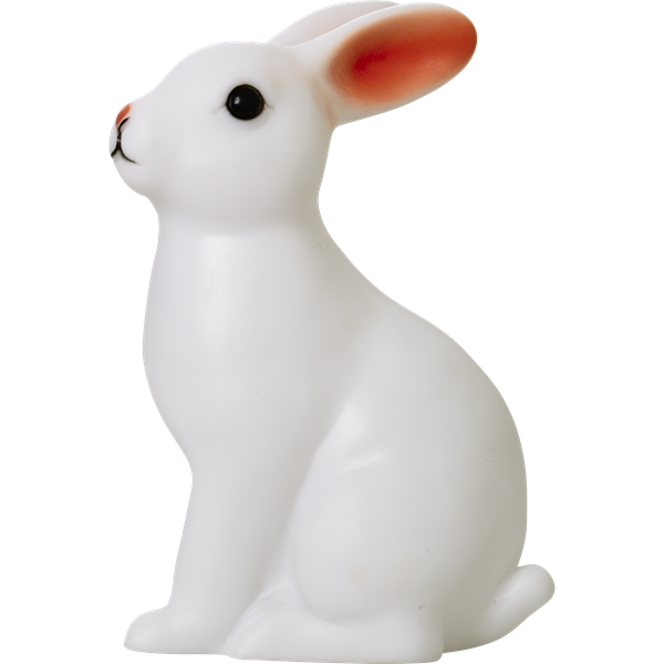 Rice, nattlys kanin